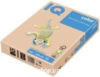 IQ Color A/4 160g 24 P pezsgő